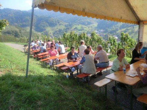 Wine tour 2011